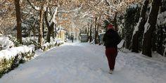 Греция: «мороз и солнце» в выходные http://feedproxy.google.com/~r/russianathens/~3/QaxDfSlfL-0/24180-gretsiya-moroz-i-solntse-v-vykhodnye.html  Постепенно в Греции зима вступает в свои права. В субботу и воскресенье, по прогнозу метеорологов, на территории страны резко снизится температура воздуха, местами выпадет снег.