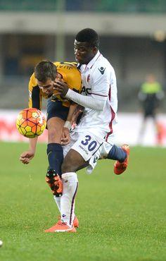 Hellas Verona FC v Bologna FC - Serie A - Pictures - Zimbio