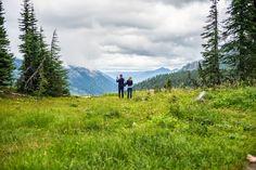 Tipsoo Lake Trail - Mt. Rainier National Park : wildflower meadows and glaciers