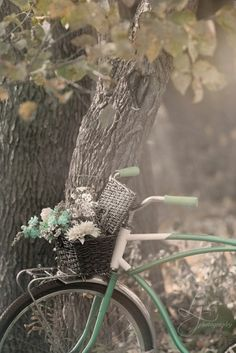 Bikes with Baskets...