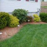 Chic Simple Backyard