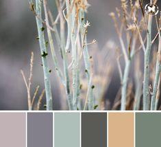 Paint Color Palettes, Nature Color Palette, Colour Pallette, Modern Color Schemes, Colour Schemes, Color Combos, Natural Paint Colors, Farmhouse Paint Colors, Desert Colors