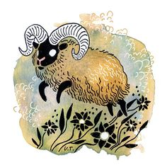 Aries / Ulla Thynell illustration