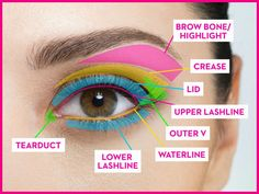 Know where each type of eye makeup goes. - GoodHousekeeping.com