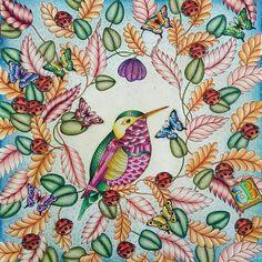 Que lindeza!!! @Regrann from @alebavaresco - Animal Kingdom by #milliemarotta #polychromos #albrechtdurer #fabercastell #animalkingdom #animalkingdombook #alebavascolouring #reinoanimal #mencoloring #artcoloring #arttherapy #jardimsecreto #ideiasfeitaamao #inspiracaododia #florestamagica #florestaencantada#Regrann #artecomoterapia #coloringbook #tropicalwonderland #lapisdecor #instaart #instacoloring #colorindooinstagram #passatempopreferido #art #amocolorir