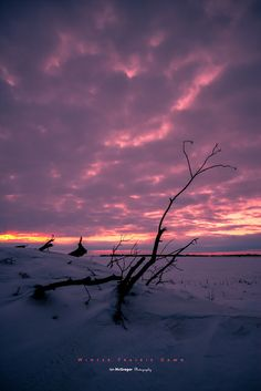 Winter Prairie Dawn / Saskatchewan, Canada  by IanDMcGregor, via Flickr