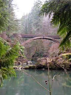 Pacific Northwest, Washington hikes, biking trail, running trail north of Vancouver, day trip, outdoor activities in the NW, 3 waterfalls to see, swimming holes in the summer, bald eagle, and wonderful nature sounds!