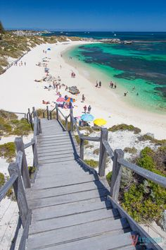 Put Rottnest Island on your Australian travel bucket list