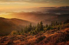 Niesamowite warsztaty i plener fotograficzny na przełęczy Okraj. W krainie mgieł i inwersji oraz cudownych panoram okrytych kołderką chmur.