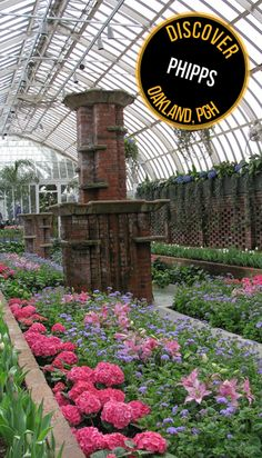 Phipps Conservatory in Pittsburgh is one of my favorite places.  Always good for a day out.