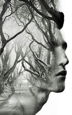 Double exposure trees forest man