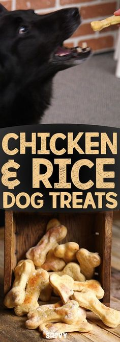 We love our furry friends and we want to keep them just as happy and healthy as we are, that's why we've come up with these delicious chicken and rice dog biscuits. These dog treats are easy to make and super healthy as they are made with all natural ingredients to keep your pup and their tummy's happy.