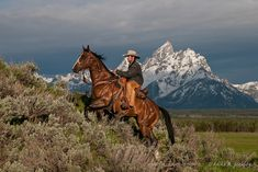 Wrangler and horse climbing a steep hill in front of the Grand Teton mountain range in Jackson Hole, WY Cowboy Horse, Cowboy Art, Horse Girl, Most Beautiful Horses, All The Pretty Horses, Man From Snowy River, Cowboy Pictures, Cowboy Images, Westerns