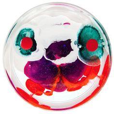 petri-dish-painting-klari-reis-16
