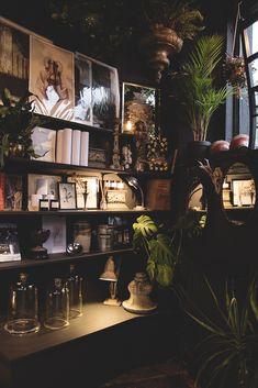 Cosy Corner of the Shop. Dark Interiors, house plants and bookshelves - - Cosy Corner of the Shop. Dark Interiors, house plants and bookshelves Cosy Corner of the Shop. Dark Interiors, house plants and bookshelves Interior Tropical, Interior Plants, Interior And Exterior, Interior Architecture, Interior Balcony, Cosy Interior, Bohemian Interior, Classic Interior, Apartment Interior