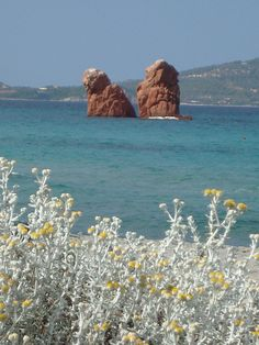 From Cea beach, Sardinia | Flickr - Photo Sharing!