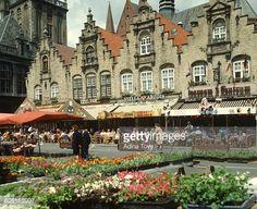 Belgium, Veurne, Central Market Square, a cyclist travelling... #veurne: Belgium, Veurne, Central Market Square, a cyclist… #veurne