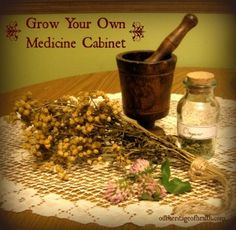Grow your own medicine cabinet