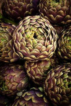 green-is-gold artichoke carciofi Fruit And Veg, Fruits And Vegetables, Patterns In Nature, Food Styling, Food Art, Food Photography, Healthy Eating, Flowers, Beautiful