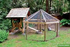 "Bear Proofing Chicken Coops - ""Even though very strong it probably isn't strong enough to keep out a determined bear.  When we had one big male come by to take a look I realized I needed to add a strand of low voltage electrical fencing around the perimeter."""