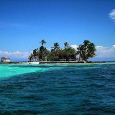 Honduras - Utila is a crown jewel.