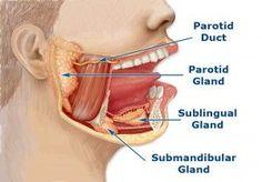 Facial gland pain