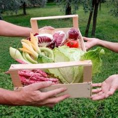 Community Supported Agriculture   Learnist