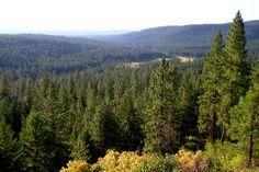 Indian Reservation   Spokane Indian Reservation   Flickr - Photo Sharing!
