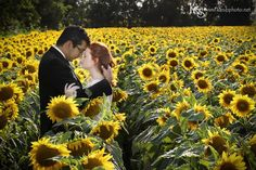 Simply can't imagine your wedding without sunflowers? Me neither! So here are 50 sunflower-inspired ideas for you and me both!