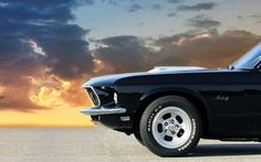 Mustang Mustang Old, Ford Mustang 1969, Ford Mustang Fastback, Muscle Cars, Classic Mustang, Plymouth Barracuda, Abandoned Places, Dream Cars, Classic Cars