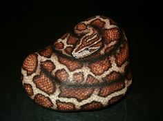 amylenore paint rocks | Hand Painted Rock Art Burmese Python Snake by amylenore on Etsy