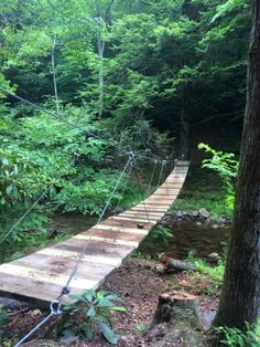 over a footbridge as you explore the nature preserve that is home to countless species of wildlife including.Cross over a footbridge as you explore the nature preserve that is home to countless species of wildlife including. Hiking Places, Hiking Trails, Places To Travel, Day Trips In Pa, Weekend Trips, Vacation Spots, Vacation Destinations, Vacation Ideas, Vacation Places