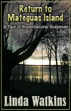RETURN TO MATEGUAS ISLAND: 5-Star Review from READERS' FAVORITE