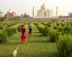 Photo bomb at the Taj Photo by P. Nestor — National Geographic Your Shot Places To Travel, Places To Go, Pleasing People, Dream Trips, National Geographic Photos, World Cultures, Photo Editor, Amazing Photography, Taj Mahal