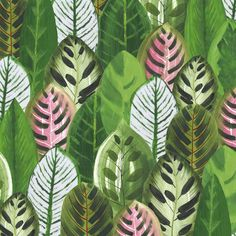 by Hallmark Textile Prints, Leaf Prints, Textiles, Plant Illustration, Pattern Illustration, Surface Pattern Design, Pattern Art, Textures Patterns, Print Patterns