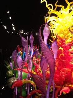 Space Needle Chihuly Exhibit   But in Chihuly's current exhibition at the Seattle Center, the best ...