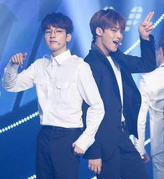 Wonwoo and Mingyu meanie Mingyu Wonwoo, Seungkwan, Woozi, Carat Seventeen, Mingyu Seventeen, Won Woo, Thing 1, Seoul Music Awards, Seventeen Wallpapers
