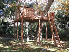 Tree Platform Designs   Los Angeles Wood Tree Houses, Playhouses, Play Forts & Play Structures ...