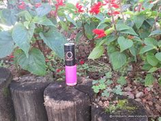 Vivy Duarte: Esmalte da Semana: Pink & Lace