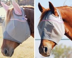 Crusader Pasture Standard Fly Mask - Warmblood by Cashel. $22.95. The safe alternative to fly sprays. Patented three-hole cap eliminates forelock damage and the unique design keeps the mesh well away from the eye area, making the Crusader the most comfortable mask available. The plastic-coated mesh is durable and blocks 70% of damaging UV rays. Gray mesh with black trim. Manufacturer Part Numbers: CFMWBS