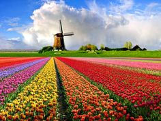 The Colors of Travel - slideshow