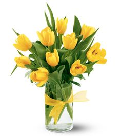 yellow tulips - Google Search