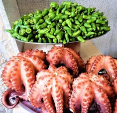 Cómo cocer pulpo: receta paso a paso Diabetic Recipes, Mexican Food Recipes, Diet Recipes, Snack Recipes, Octopus, Healthy French Fries, Tapas, Unstuffed Cabbage Soup, Veggie Chili