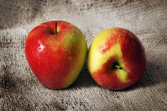 The health benefits of raw apple cider vinegar – The Holistic Ingredient