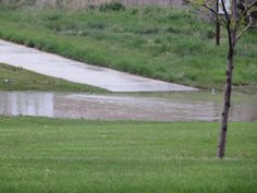 Eastdale Park, with the recent rains, had its own fast moving creek approximately 2-1/2 feet deep!