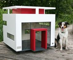 Your dog isn't a pet, it's a fashion accessory – and you should shower that fashion accessory with all the trendiest things, from designer leashes, to modern dog houses. This modern doggy mansion give an open feel to a normally dull doggy home, with sunlight shining in.