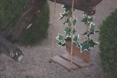 Hey, I found this really awesome Etsy listing at http://www.etsy.com/listing/172718388/bench-swing-prop-newborn-photography