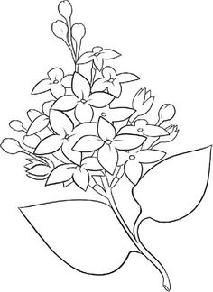 Printable Flower Coloring Pages, Coloring Book Pages, Coloring Pages For Kids, Engraving Illustration, Antique Illustration, Black And White Drawing, Black And White Pictures, Lilac Flowers, Colorful Flowers
