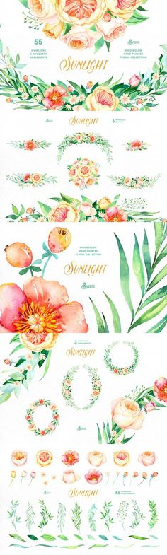 Sunlight. Floral Collection. Watercolor Flowers