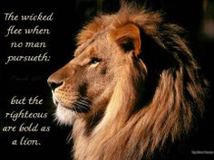 """""""IF YOU CAN ACCEPT THIS TRUTH OF THE PERFECT RIGHTEOUSNESS OF CHRIST, you will have the boldness of a lion. You will never again fear any person or look at someone else's life and feel unworthy... 'The righteousness of Jesus Christ... it's not mine, it's His, but it's accounted to me by Jesus Himself, so I may call it my own!'"""" ~ David Wilkerson"""